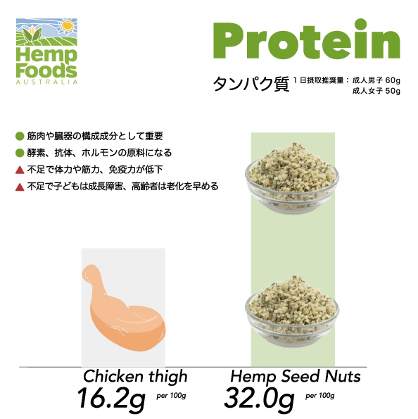 nuts-protein