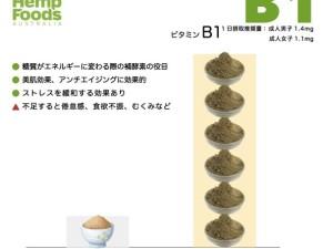 protein-b1
